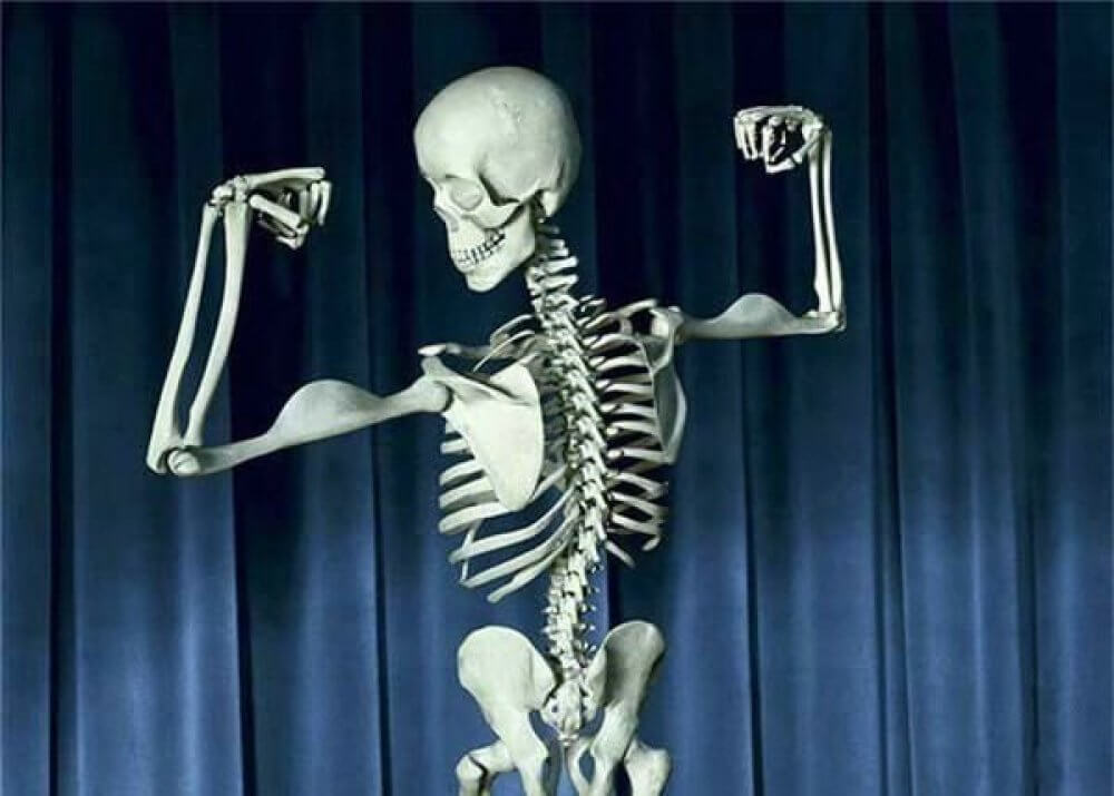 Strong Bones Life Miracle Health Products Wholesale